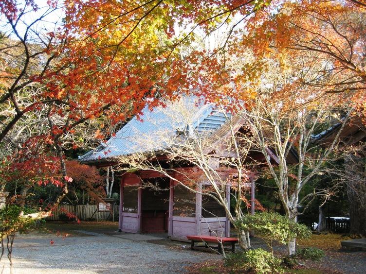 小松寺の紅葉2016|見ごろ時期・混雑状況・駐車場等まとめ