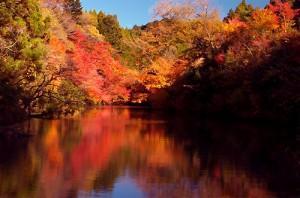 千葉県君津市・亀山湖の紅葉2016|見ごろ時期・混雑状況・駐車場等