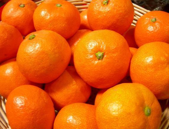 みかんを食べると風邪予防になる?栄養・効果効能・白い筋等まとめ