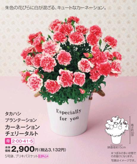 イオンの母の日用ギフト・お花・スイーツ等(2017)|価格・種類・予約方法